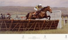 Istabraq by Peter Curling