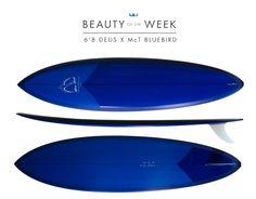 Blog | McTavish Surfboards