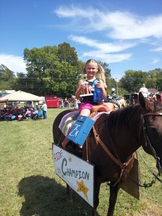 Fun do it yourself costumes for horses ideas for horse and rider fun do it yourself costumes for horses ideas for horse and rider all about horses pinterest horse costumes and horse costumes solutioingenieria Gallery