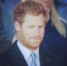 """Prince Henry Updates • """"Prince Harry's beard""""spam"""