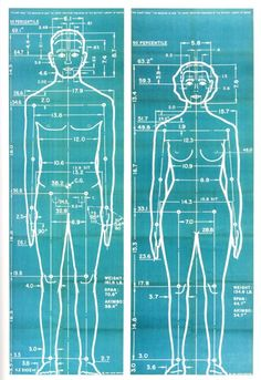 Joe e Josephine, modelos feitos por Henry Dreyfuss Human Dimension, Medical Art, Cecile, Science, Technical Drawing, Design Reference, Body Measurements, Architecture Details, Human Body