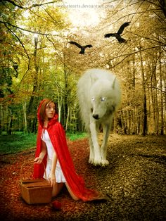 little red riding hood and the wolf. As soon as Wolf began to feel That he would like a decent meal, He went and knocked on Grandma's door. little red riding hood Chris Martin, Grandma Clothes, Fairy Tale Images, Wolf Photos, Furry Wolf, Innocent Child, Wolf Girl, White Wolf, Walk In The Woods