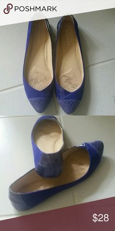 Purple flats Beautiful suede and crocodile leather flats. Great with pants, dress, shorts, or a skirt. Super comfy! Gianni Bini Shoes Flats & Loafers