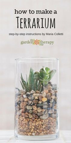 How to make a terrarium.  Once you have this basic design down, it gives the you the opportunity to interpret a terrarium garden many times over and to with your own vision. The colors of the stones can be changed, the succulents used are easy enough to be varied, and the glass container can be taller or wider. This step-by step tutorial comes to us from terrarium expert and author, Maria Colletti.