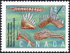 Stamp: Conodonts, Microfossils, Palaeozoic Era (Canada) (Prehistoric Canada (2nd series), Primitive Vertebrates) Mi:CA 1224,Sn:CA 1306,Yt:CA 1182,Sg:CA 1419