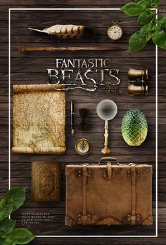 Fantastic Beasts and where to find them (edit by asheathes)
