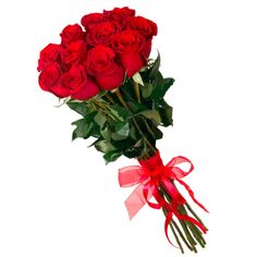 11 red roses (holland),Send Birthday,Congrats,Love,March 8 flowers to Armenia online. Flower Bouqet, Rose Bouquet, Flower Delivery, Red Roses, Holland, Birthday, Creative, Plants, Diy