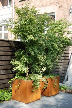 Corten Steel Rust Weathered Garden Planter Adezz Andes Cube Box