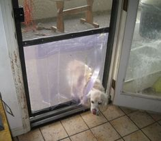 Easy, Inexpensive Doggy Door In A Screen Door