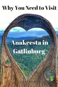 Why You Need to Visit Anakeesta in Gatlinburg, TN. Learn more about the adventures offered for all ages at Anakeesta. Gatlinburg Vacation, Tennessee Vacation, Gatlinburg Tn, Gatlinburg Restaurants, Pigeon Forge Tennessee, East Tennessee, Cabins In Gatlinburg Tennessee, Ripleys Aquarium Gatlinburg, Sevierville Tennessee