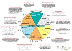 Do you wake up the same time every night? Or do you have more pain at certain hours? TCM Body Clock can give you an idea where you may have an imbalance in your body. Learn more: http://www.spiritualcoach.com/chinese-body-clock/  #TCM #ChineseMedicine: