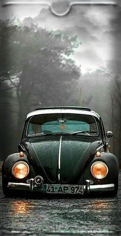 Super Old Cars Vintage Volkswagen Ideas Cars Vintage, Retro Cars, Car Volkswagen, Vw Cars, Family Car Decals, Cool Old Cars, Car Backgrounds, Car Wallpapers, Luxury Cars