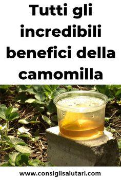 tutti gli incredibili benefici della camomilla Healthy Food, Healthy Recipes, Alcoholic Drinks, Wine, Chart, Healthy Foods, Healthy Eating Recipes, Liquor Drinks, Healthy Eating