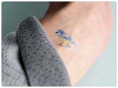 temporary tattoos, Blue tit tattoos, Robin, Owl , Tit