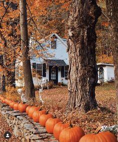 Autumn Day, Hello Autumn, I Fall, Autumn Witch, Autumn Leaves, New England Fall, New England Style, Autumn Aesthetic, Cozy Aesthetic