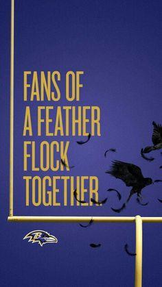Forever ravens fan!!!