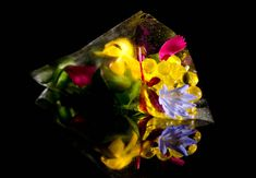 Vanishing Edible Film Cone, Micro Salad, Olive Oil Caviar - Bouquet of Flowers Salad - Molecular Gastronomy