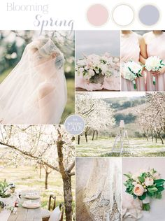 Delicate Cherry Blossom Wedding Ideas in Rose Quartz | http://heyweddinglady.com/delicate-cherry-blossom-wedding-ideas-rose-quartz