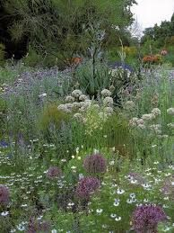 Image result for william robinson landscaping