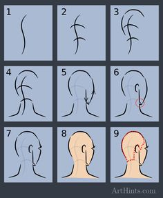How to draw back Head