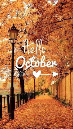 2015 October Check-In Hello October. Accountability post for my 2015 commitments aka resolutions. Source by pammcmurtry 2015 October Check-In Hello October. Accountability post for my 2015 commitments aka resolutions. Source by pammcmurtry Cute Fall Wallpaper, October Wallpaper, Halloween Wallpaper, Hello October Images, Fall Background, October Fall, Happy October, Hello September, Autumn Aesthetic