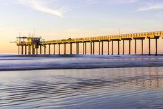 Scripps Pier La Jolla - Golden Glow In Winter Photograph by Priya Ghose