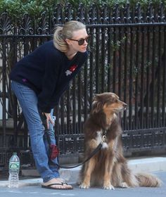 Celebs and their pets in 2016:     Amanda Seyfried walked her dog, Finn, in New York City on Sept. 14. - Best Images/Fame Flynet