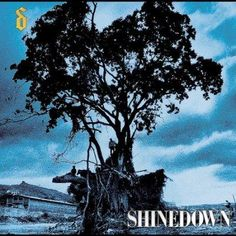Shinedown - Leave A Whisper, Silver