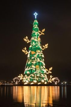 World's largest floating Christmas tree lit up in Brazil
