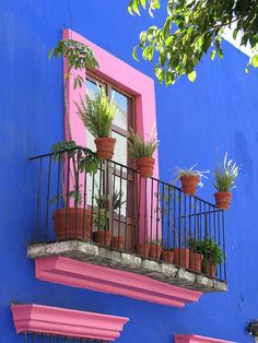 House Exterior Colors Blue Window 65 Ideas For 2019 Mexican Colors, Mexican Art, Mexican Style, Ventana Windows, Murs Roses, Fachada Colonial, Jolie Photo, Christmas Aesthetic, Spanish Style