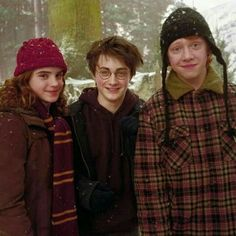 Harry Potter Tumblr, Harry Potter Hermione, Harry James Potter, Ginny Weasley, Harry Potter Trio, Posters Harry Potter, Harry Potter Navidad, Mundo Harry Potter, Ron And Hermione