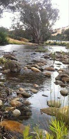 The Goobarragandra River Tumut NSW Australia Visit Australia, Australia Living, Australia Travel, It's Wonderful, Wonderful Places, British Guiana, Magic Memories, Australia Landscape, Rock Pools