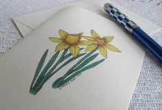 Note Cards with Pen and Ink Drawing  of Daffodils