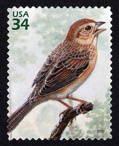 Bachman's Sparrow, a US .34¢ stamp issued April 26, 2002