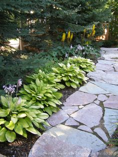 Landscape Hastas Design, Pictures, Remodel, Decor and Ideas