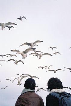 Je veux que notre amour était facile, libre et heureuse, comme ces oiseaux, et sans cesse, en dehors du temps et de l'espace.❤