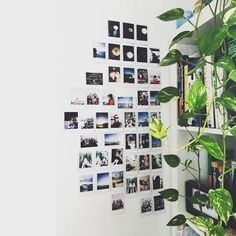 Decoration with photographs, ideas to decorate the wall with photos, ideas for hanging photos on the Photo Polaroid, Polaroid Wall, Polaroids On Wall, Polaroid Display, My New Room, My Room, Bedroom Decor, Wall Decor, Bedroom Inspo