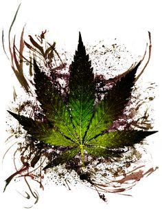 cannabis art - Cannabis Art | SinseMedia  sinsemedia.net