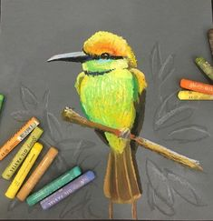 Oil pastels A while ago my husband gave me a beautiful chest full of all kinds of things . Chalk Pastel Art, Soft Pastel Art, Pastel Artwork, Oil Pastel Paintings, Oil Pastel Drawings, Bird Drawings, Chalk Pastels, Colorful Drawings, Oil Pastels