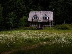 Small country home in the woods.