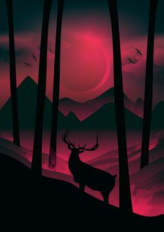 The Art Of Animation, Martynas Pavilonis