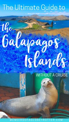 In this in-depth guide to visiting the Galapagos Islands without a cruise, you will learn about the different day trips you can take and the best places to eat and stay.