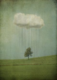 soakitin... some rain must fall.