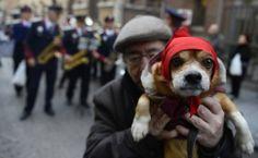 Dono aguarda em fila para que seu cão seja abençoado na igreja de São Antônio, em Madri.   Foto: Pierre-Philippe Marcou/AFP
