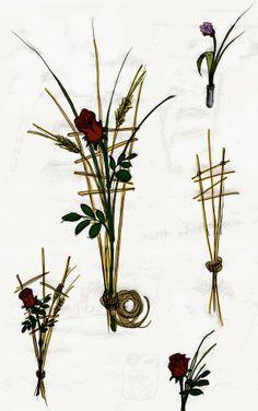 Oriol Bargalló: Ilustración - Arte floral, apuntes