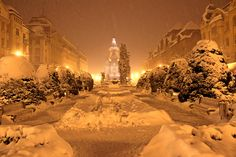Winter dream In Timisoara Great Places, Tin, Around The Worlds, Winter, Outdoor, Winter Time, Outdoors, Pewter, Outdoor Games