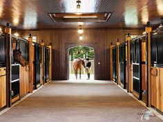 Forever a company favorite! #besthorsestalls #dreambarn #equine #CEE #classicequine