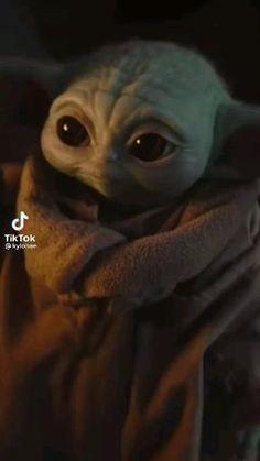 💚 so cute Yoda Meme, Yoda Funny, Yoda Images, Baby Animals, Cute Animals, Star Wars Jokes, Star Wars Pictures, Star Wars Baby, Star War 3