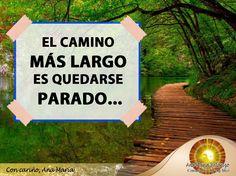 #FraseAnaMaría: El camino más largo es quedarse parado. ¡A levantarse y seguir adelante con sus metas amigos!