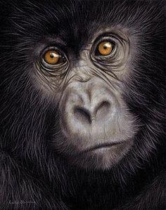 young-gorilla-painting-rachel-stribbling.jpg (276×350)